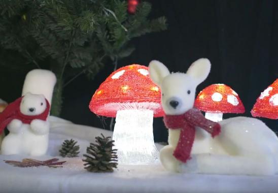 Organisation Arbre de Noël